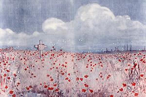 poppy-field-10942218