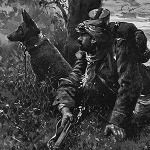 The French army used dogs for defensive work, too. With their superior hearing, dogs were particularly suitable for sentry and guard work, and many dogs served as extra lookouts for their human comrades.