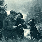 Radio communication was still unreliable in the First World War. Along the front, dogs worked as messengers, carrying notes quickly over longer distances and in combat situations.